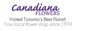 Toronto Flower Delivery Image