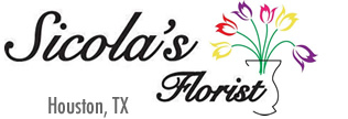 Houston Florist logo
