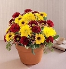 The FTD® Autumn Glory™ Bouquet