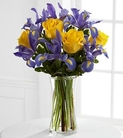 Blue iris and yellow roses