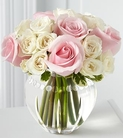 Pink roses and white spray roses
