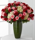Premium pink and red roses with hydrangea