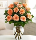 Rose Elegance™ Premium Long Stem Peach Roses