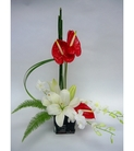 Flower Towne's Anthurium Beauty