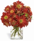 The FTD® Harvest Dreams™ Bouquet