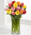 The FTD® Rush of Color™ Assorted Tulip Bouquet