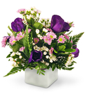 Lisianthus, Mini Daisies, and Waxflower