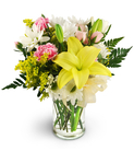 Lilies, Spray Roses, and Daisies