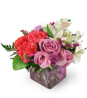 Roses, Alstroemeria, and Carnations