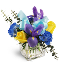Irises, yellow roses and blue carnations