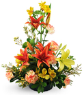 Lilies, Carnations, and Alstroemeria