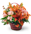 Asiatic Lilies, Alstroemeria, and Lanterns