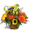 Autumn Joy Sunflower Daisy Basket™