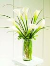 The FTD® Simple Sophistication™ Arrangement