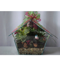 Bird House Terrarium