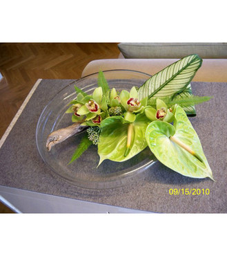 Cymbid, Anthurium and Driftwood