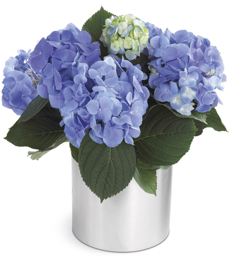 The FTD® Spring Sweetness™ Planter